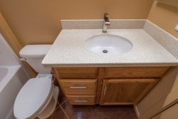 Guest bath vanity and elongated toilet